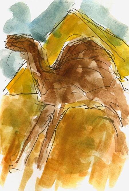 kamel-o-pyramidlit.JPG